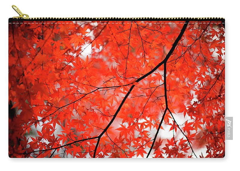 Tranquility Carry-all Pouch featuring the photograph Fall Colors In Japan by Jdphotography