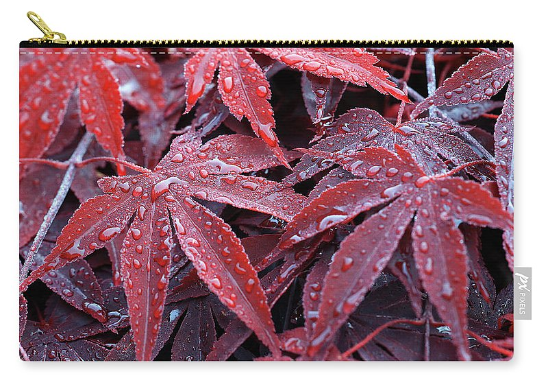 Fall Carry-all Pouch featuring the photograph Fall Leaves by C Gerber