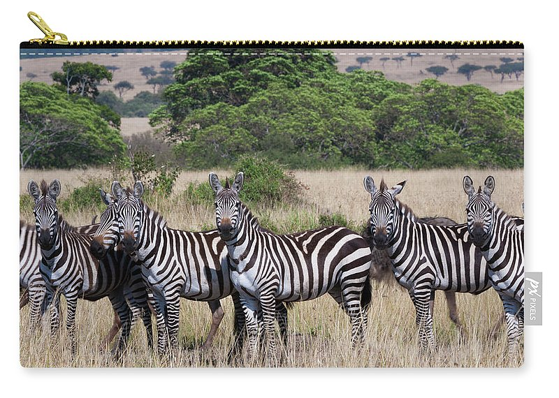 Scenics Carry-all Pouch featuring the photograph Grants Zebras, Kenya by Mint Images/ Art Wolfe