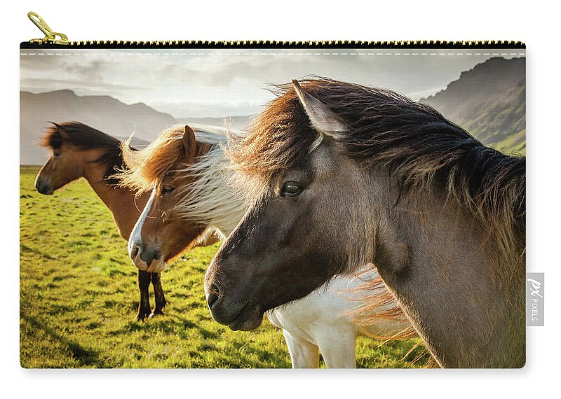 Iceland Carry-all Pouch featuring the photograph Icelandic Horses by Peter OReilly