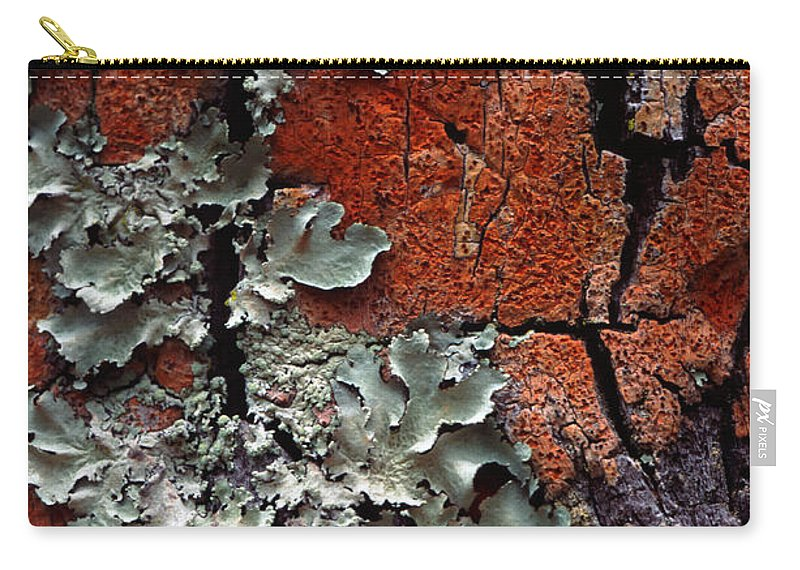 Built Structure Carry-all Pouch featuring the photograph Lichen On Tree Bark by John Foxx