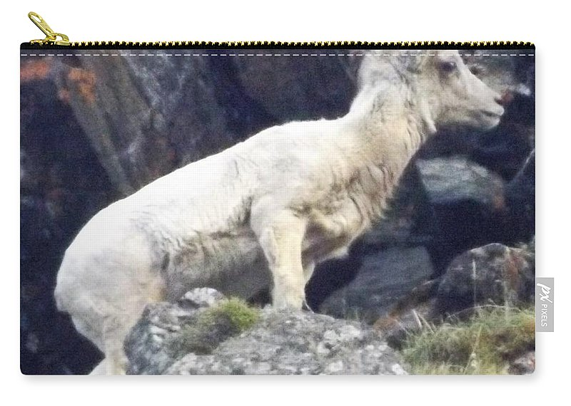Carry-all Pouch featuring the photograph Litttle Big Horn by Wyatt J Brundage