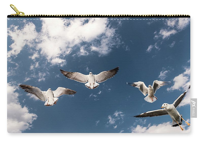 Animal Themes Carry-all Pouch featuring the photograph Myanmar, Inle Lake, Seagulls Inflight by Martin Puddy