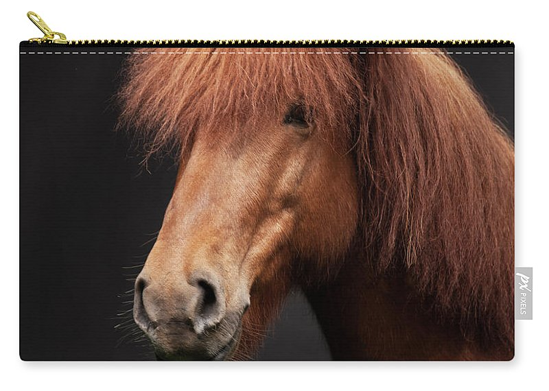 Horse Carry-all Pouch featuring the photograph Portrait Of Horse by Arctic-images