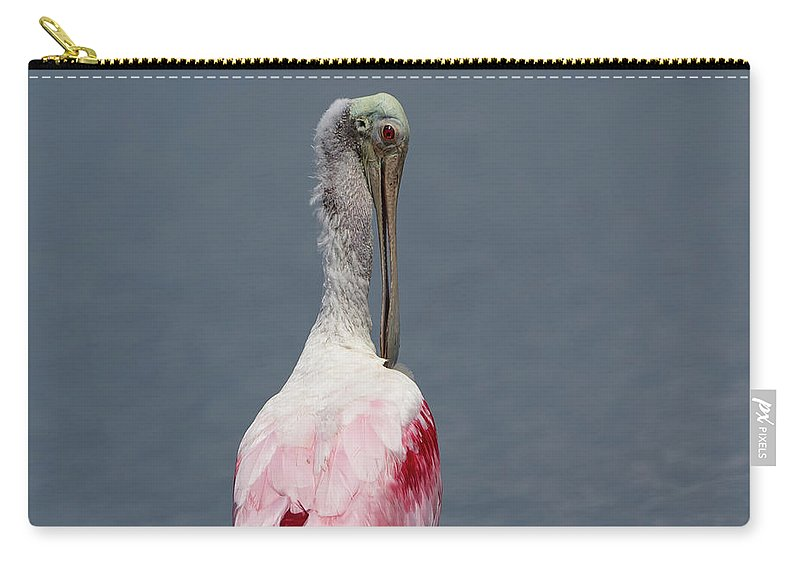 Roseate Spoonbill Carry-all Pouch featuring the photograph Roseate Spoonbill Preening by Glenn Lahde