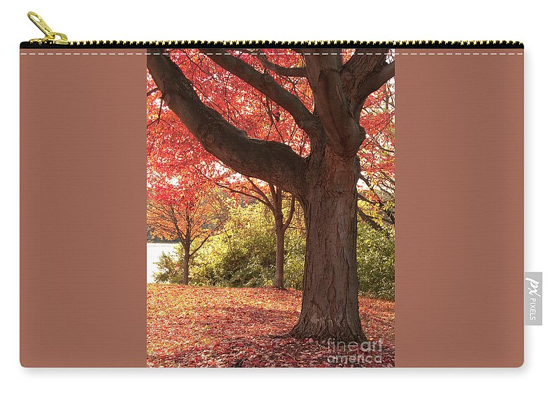 Autumn Carry-all Pouch featuring the photograph Shading Autumn by Ann Horn