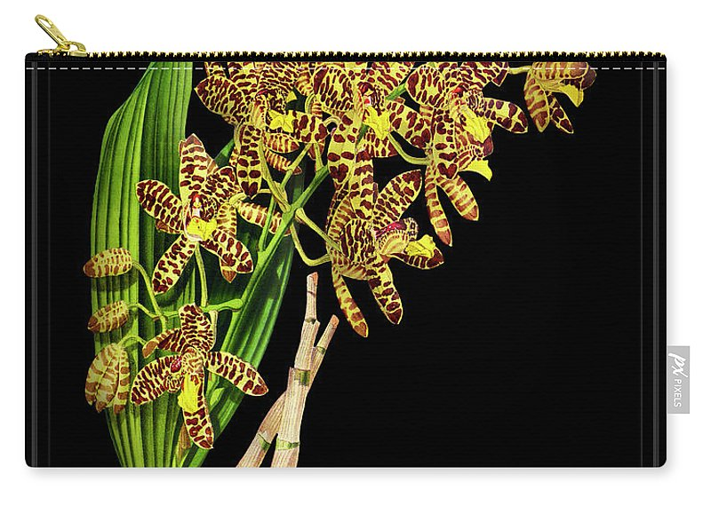 Black Carry-all Pouch featuring the drawing Vintage Orchid Print On Black Paperboard by Baptiste Posters