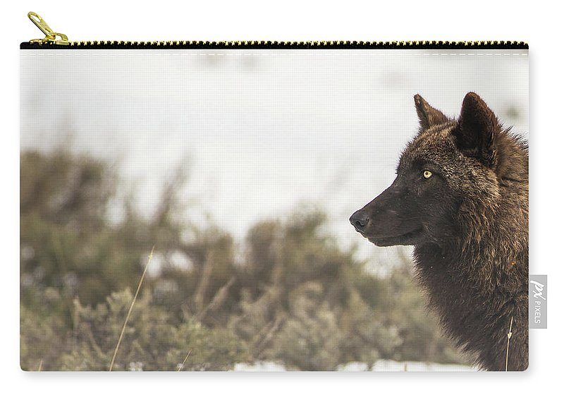 Wolf Carry-all Pouch featuring the photograph W15 by Joshua Able's Wildlife