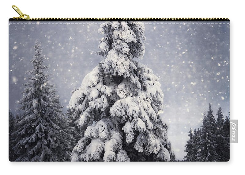 Scenics Carry-all Pouch featuring the photograph Winter Tree by Borchee