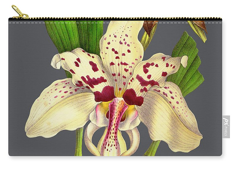 Vintage Carry-all Pouch featuring the mixed media Orchid Old Print by Baptiste Posters