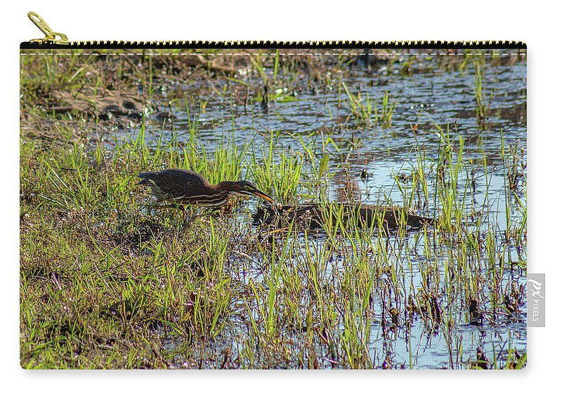 Green Heron Carry-all Pouch featuring the photograph Green Heron Looking For Food by Michael Munster
