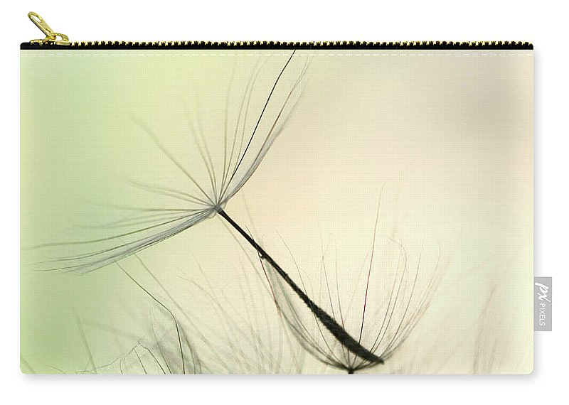 Single Flower Carry-all Pouch featuring the photograph Dandelion Seed by Jasmina007