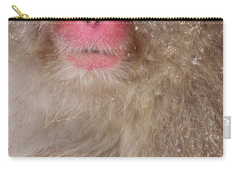 Vertebrate Carry-all Pouch featuring the photograph Japanese Macaques, Japanese Alps by Mint Images/ Art Wolfe