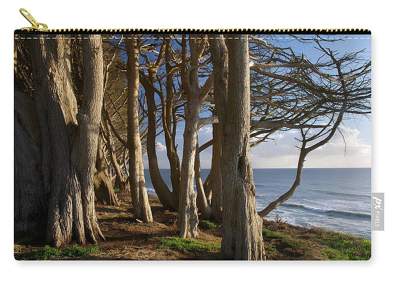 Tranquility Carry-all Pouch featuring the photograph Rustic Davenport Coast by Mitch Diamond