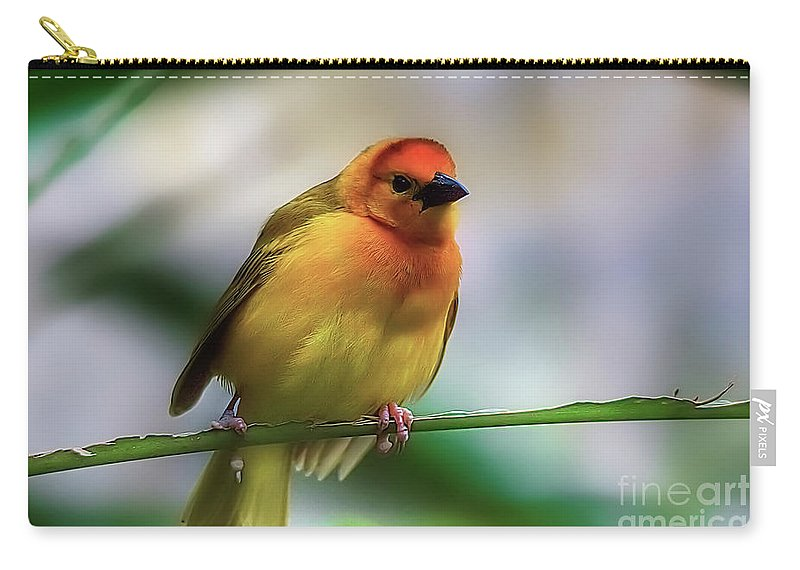 Yellow Carry-all Pouch featuring the photograph Yellow Bird by James Foshee
