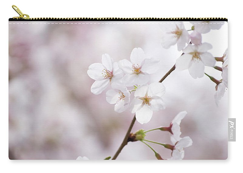 Celebration Carry-all Pouch featuring the photograph Cherry Blossoms by Ooyoo