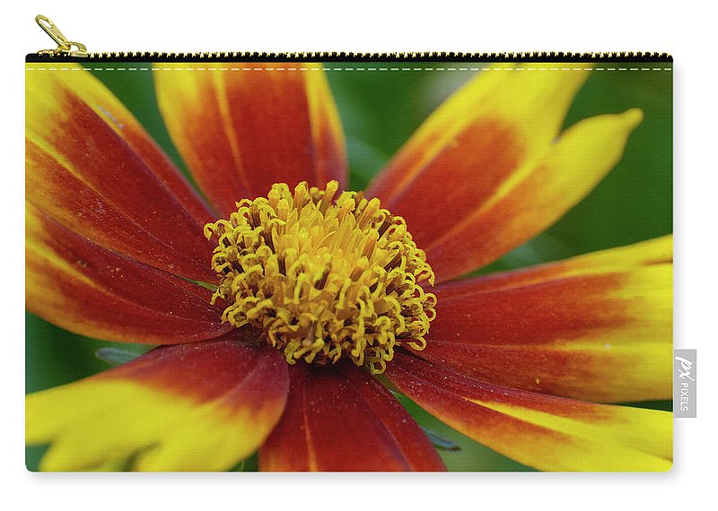 Rudbeckia Carry-all Pouch featuring the mixed media Rudbeckia by Smart Aviation