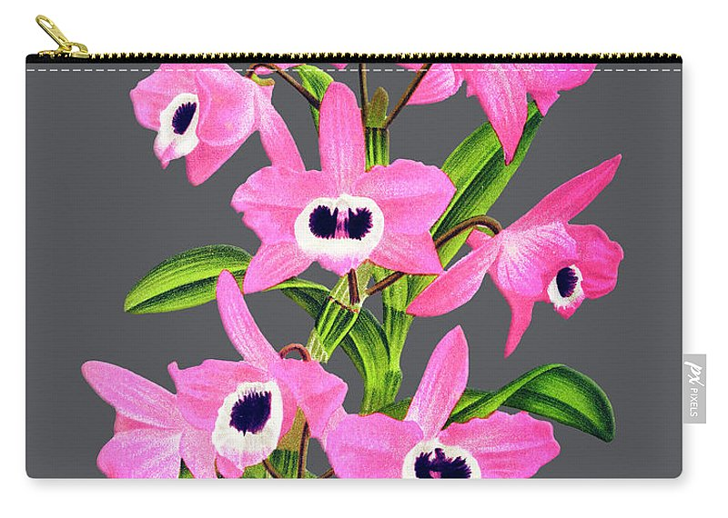 Vintage Carry-all Pouch featuring the digital art Orchid Old Print by Baptiste Posters