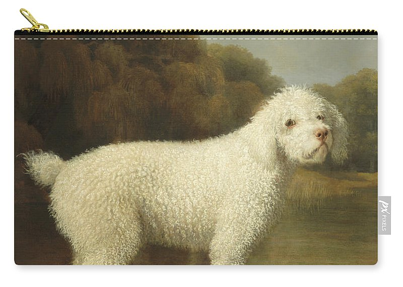 Poodle Carry-all Pouch featuring the painting White Poodle In A Punt by George Stubbs