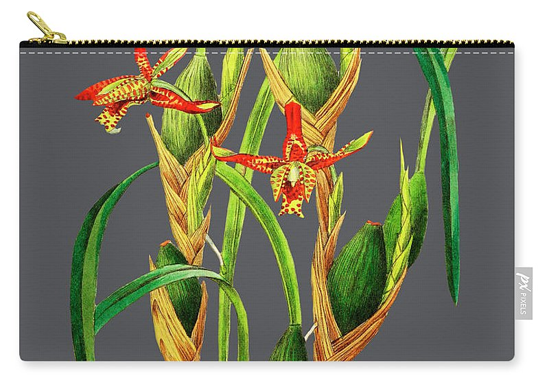 Vintage Carry-all Pouch featuring the drawing Orchid Old Print by Baptiste Posters