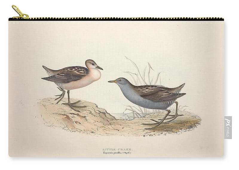 Nature Carry-all Pouch featuring the painting Different Types Of Birds Illustrated By Charles Dessalines D Orbigny 1806-1876 21 83 by Charles Dessalines D Orbigny