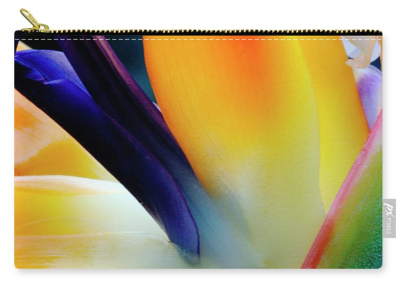 Banana Tree Carry-all Pouch featuring the photograph A Close-up Of A Flower Of A Bird Of by Eromaze