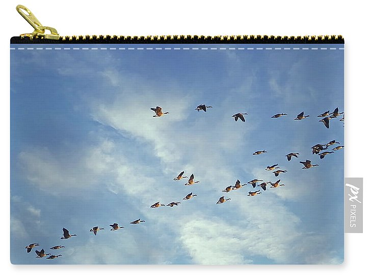 Canada Goose Carry-all Pouch featuring the photograph A Skein Of Canada Geese by Lyuba Filatova