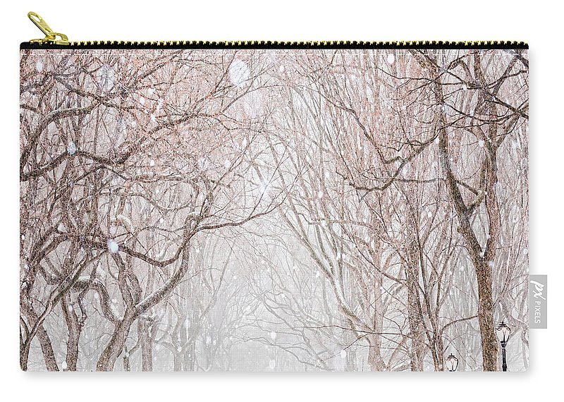 Snow Carry-all Pouch featuring the digital art A Snowy Lane by Tim Palmer