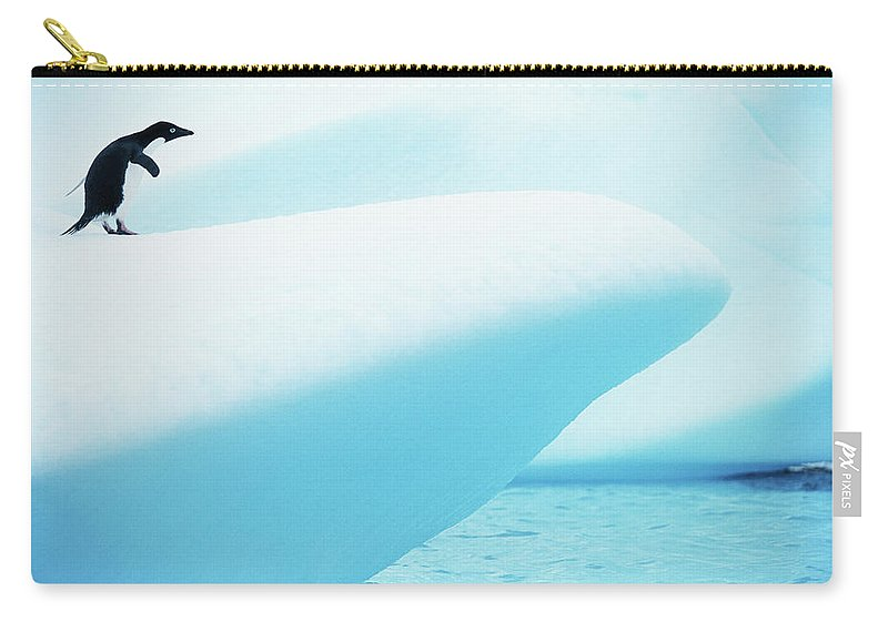 The End Carry-all Pouch featuring the photograph Adelie Penguin Pygoscelis Adeliae by Paul Souders