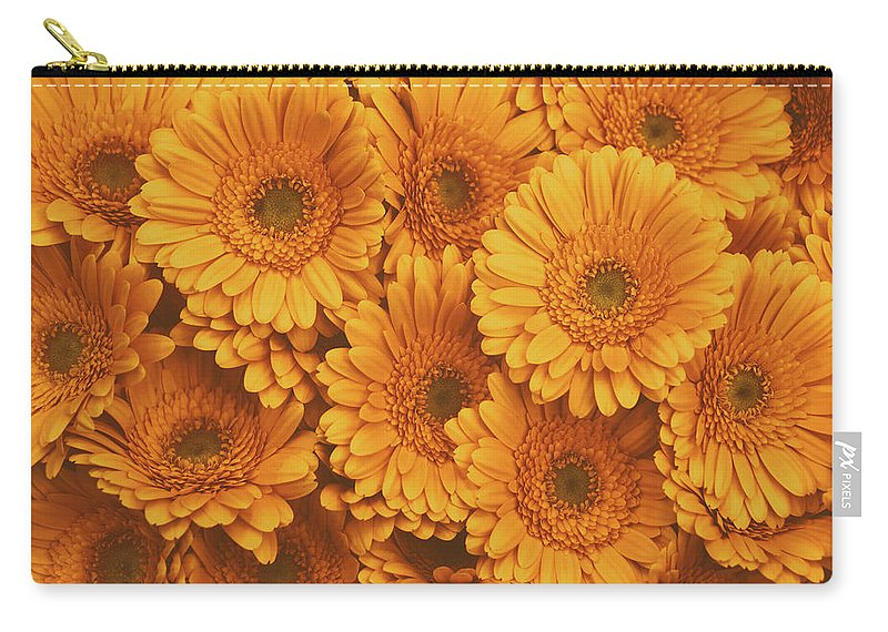 Gerbera Carry-all Pouch featuring the photograph Amber Soaked by Iryna Goodall