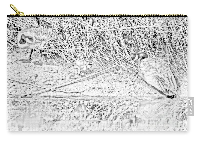 Black And White Carry-all Pouch featuring the digital art And Baby Makes 3 Sketched by Stan Townsend