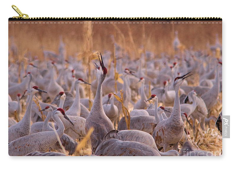 Crane Carry-all Pouch featuring the photograph And One Sings Out by Jeff Swan
