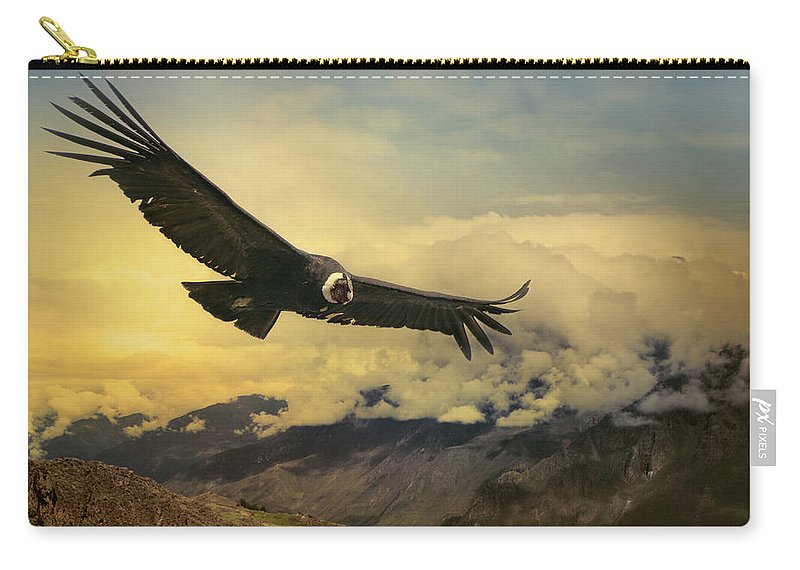 Animal Themes Carry-all Pouch featuring the photograph Andean Condor by Istvan Kadar Photography