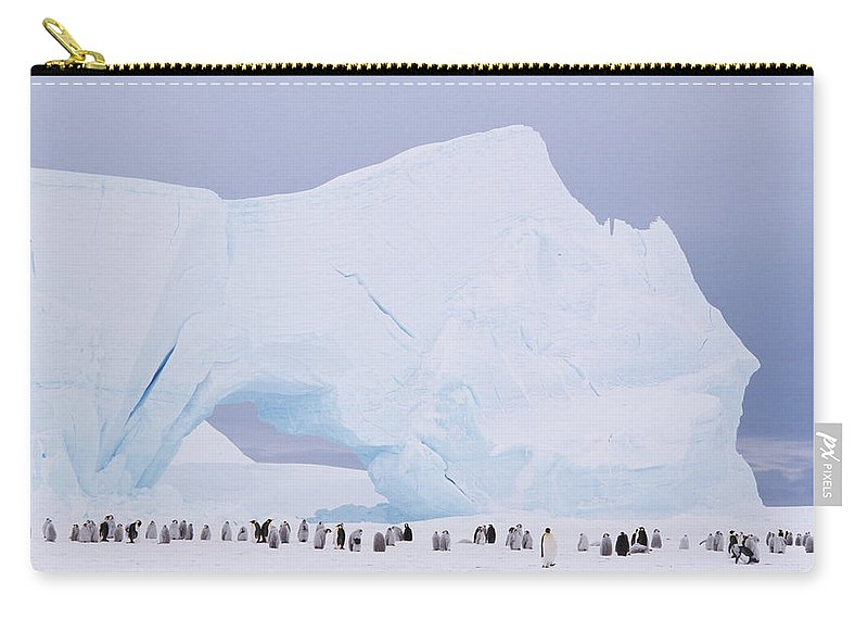 Emperor Penguin Carry-all Pouch featuring the photograph Antarctica, Emperor Penguin Aptenodytes by Joseph Van Os