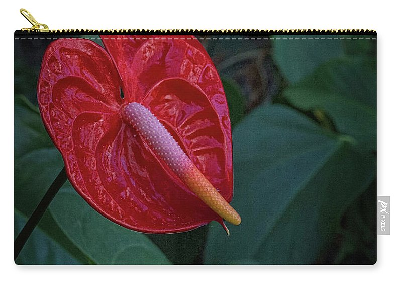 Anthurium Carry-all Pouch featuring the digital art Anthurium 1 by Joseph Vittek