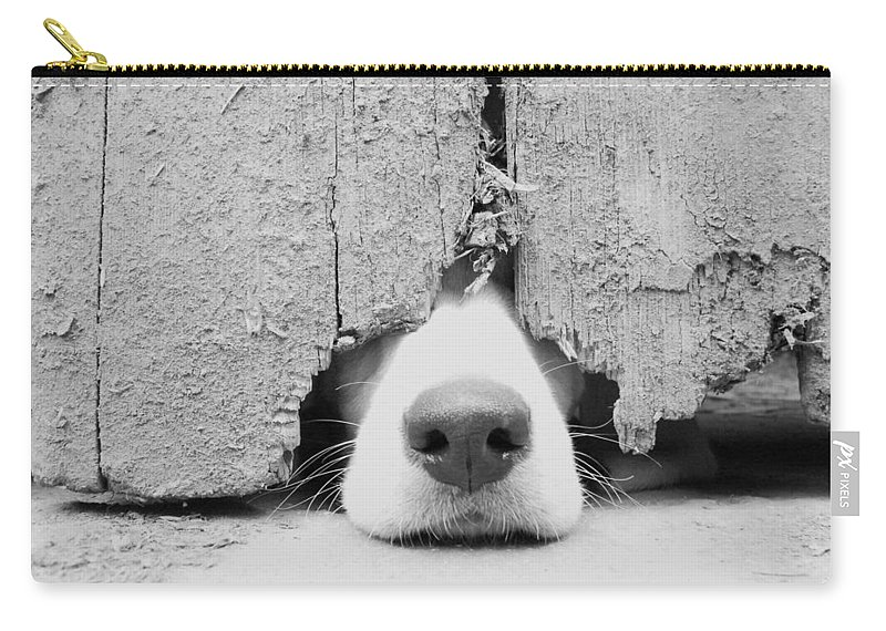 Pets Carry-all Pouch featuring the photograph Anyone Out There by By Jake P Johnson