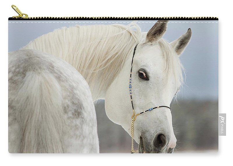 Horse Carry-all Pouch featuring the photograph Arabian Stallion by Photographs By Maria Itina