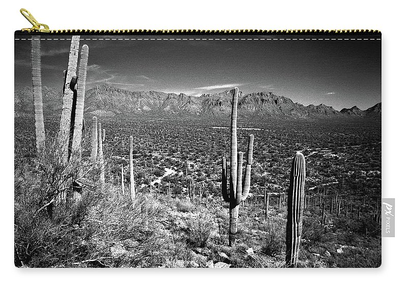 Saguaro Cactus Carry-all Pouch featuring the photograph Arizona, Tucson, Saguaro Np, Brown by James Denk