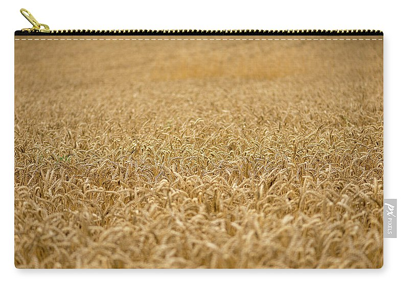 Wheat Carry-all Pouch featuring the photograph A Field Of Wheat by Vicen Photography