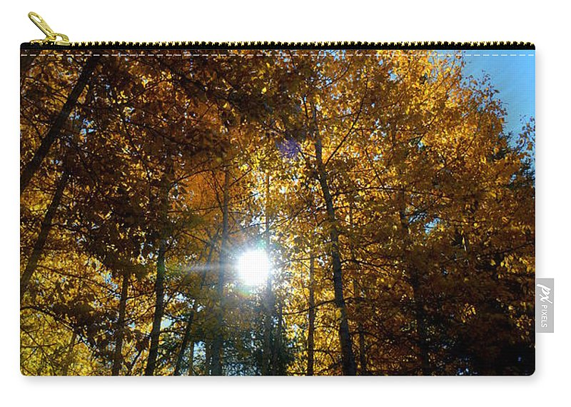 Aspens Carry-all Pouch featuring the photograph Aspens Sunlight 2 by Brian Goodbar