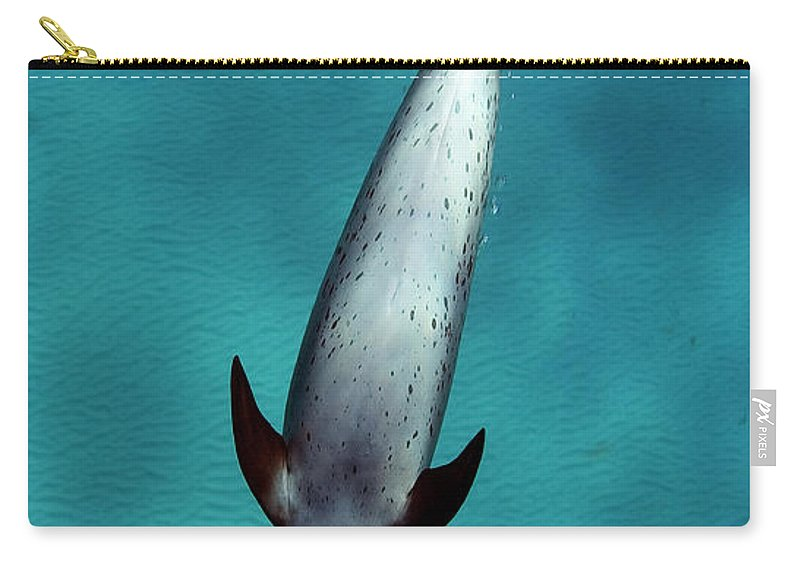 Animal Themes Carry-all Pouch featuring the photograph Atlantic Spotted Dolphin by Todd Mintz Www.tmintz.ca