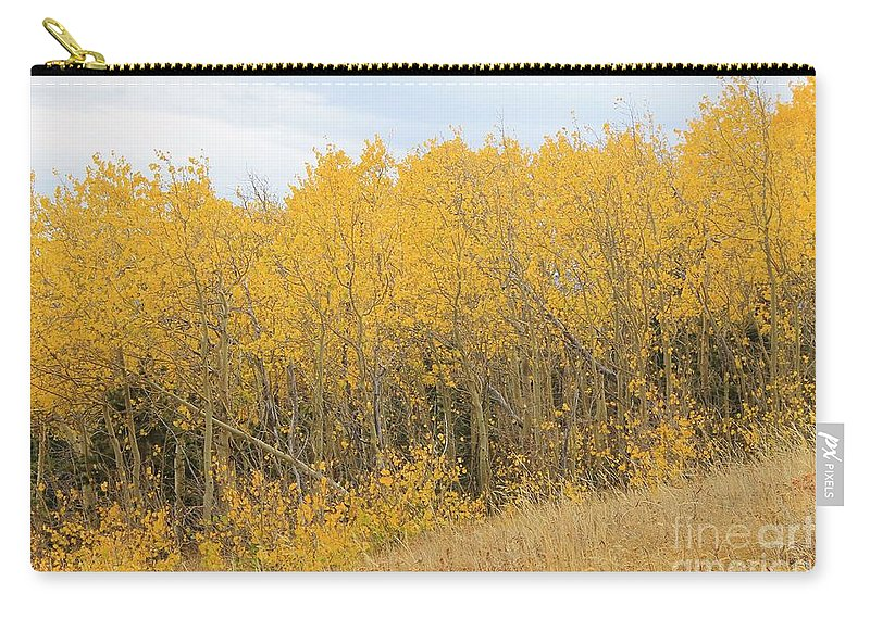 Nature Carry-all Pouch featuring the photograph Autumn Aspens by Tonya Hance