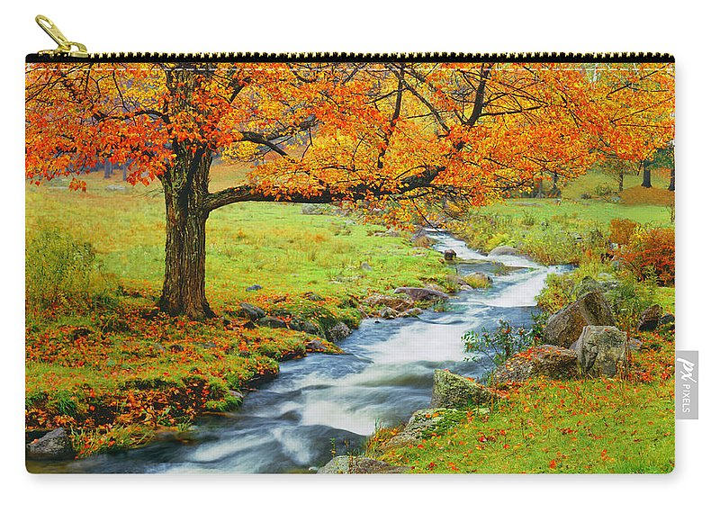 Scenics Carry-all Pouch featuring the photograph Autumn In Vermont G by Ron thomas