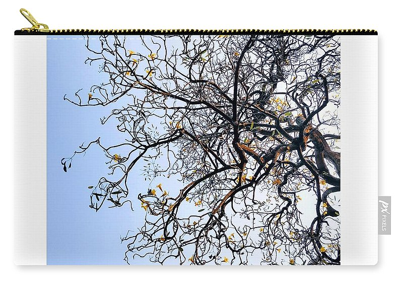Autumn Carry-all Pouch featuring the photograph Autumn by Priya Hazra