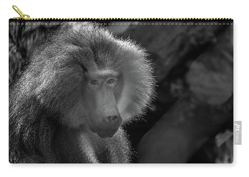 Adult Carry-all Pouch featuring the photograph Baboon Black And White by Diego Garcia