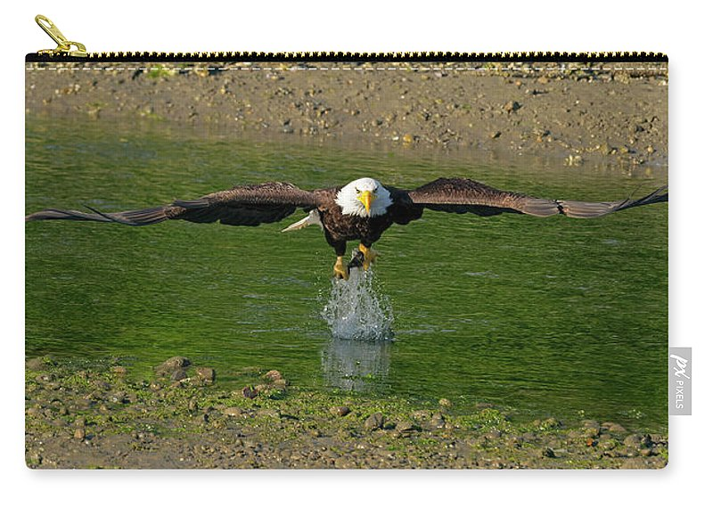 Hood Carry-all Pouch featuring the photograph Bald Eagle Catching A Fish by Gary Langley