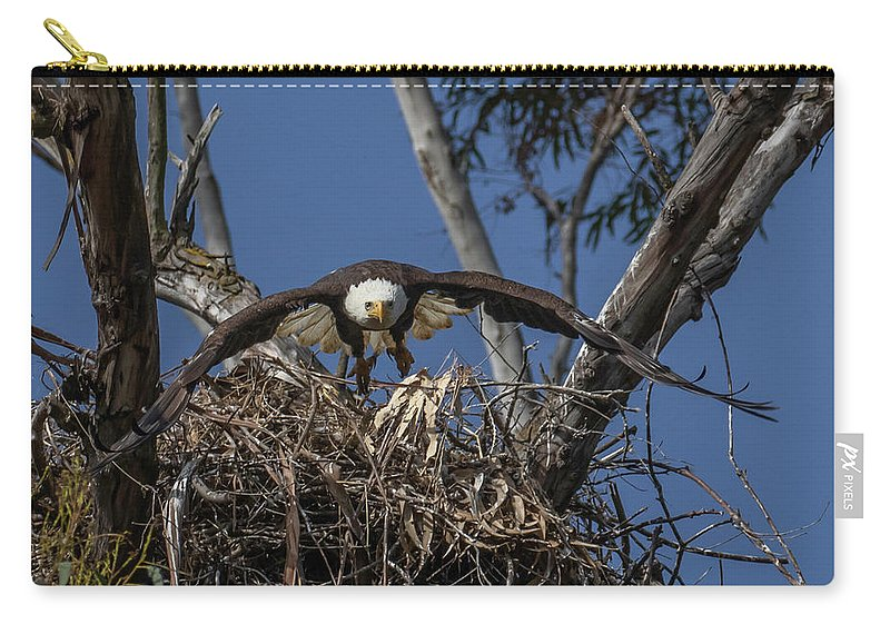 Bald Eagle Soaring Nest Flying Brown White Yellow Beak Wings Flight Take Off Carry-all Pouch featuring the photograph Bald Eagle by Lee Ann Baker