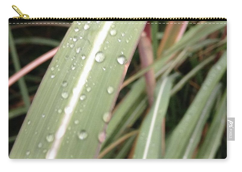 Bamboo Carry-all Pouch featuring the photograph Bamboo And Water by Malachi O'Bryan
