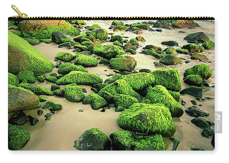 Tranquility Carry-all Pouch featuring the photograph Beach Rocks Covered With Seaweed by Andre Bernardo