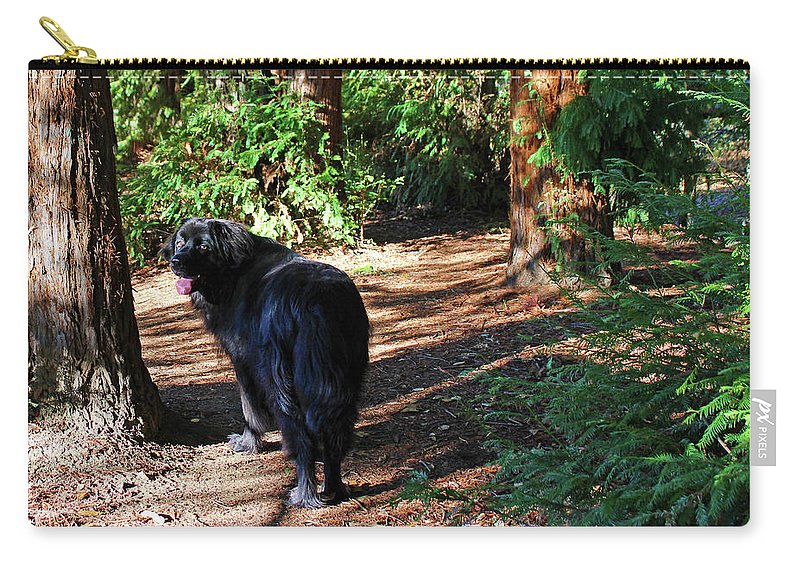 Newf Carry-all Pouch featuring the photograph Bear In The Woods by Christine Mullis